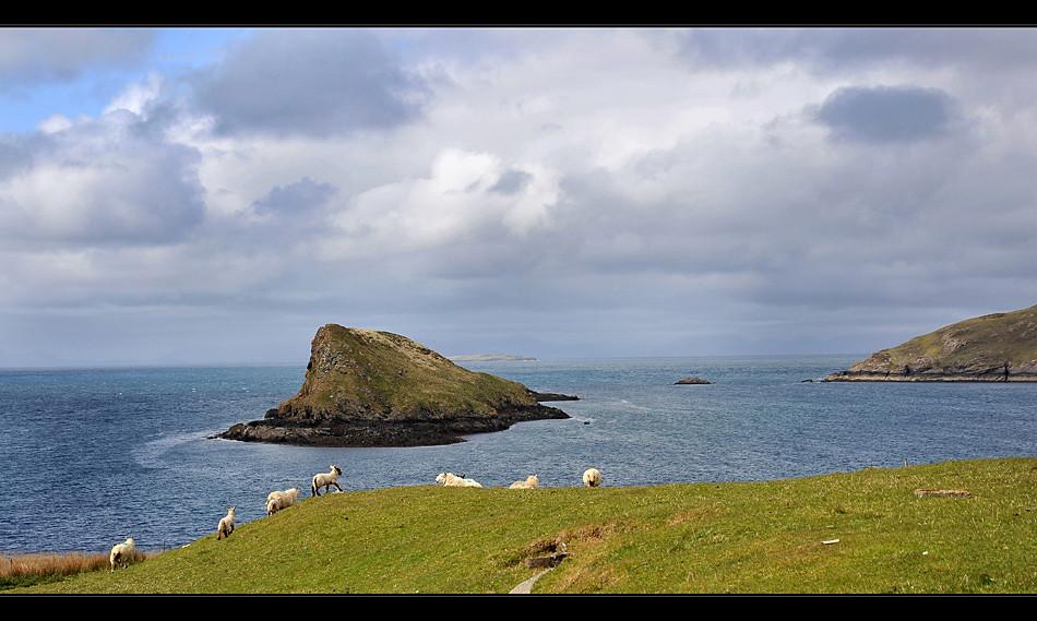Duntulm Castle / Trotternish - Isle of Skye II