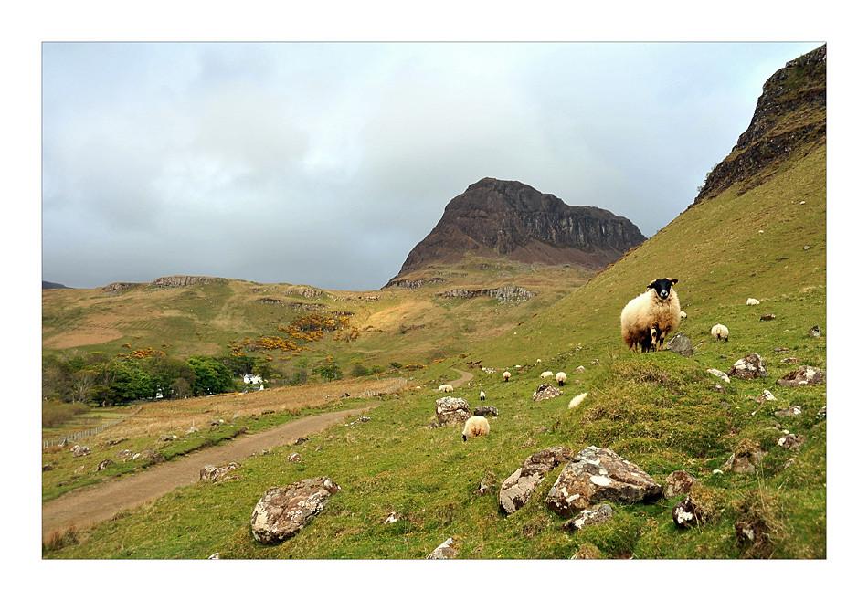 Talisker  Bay / Isle of Skye