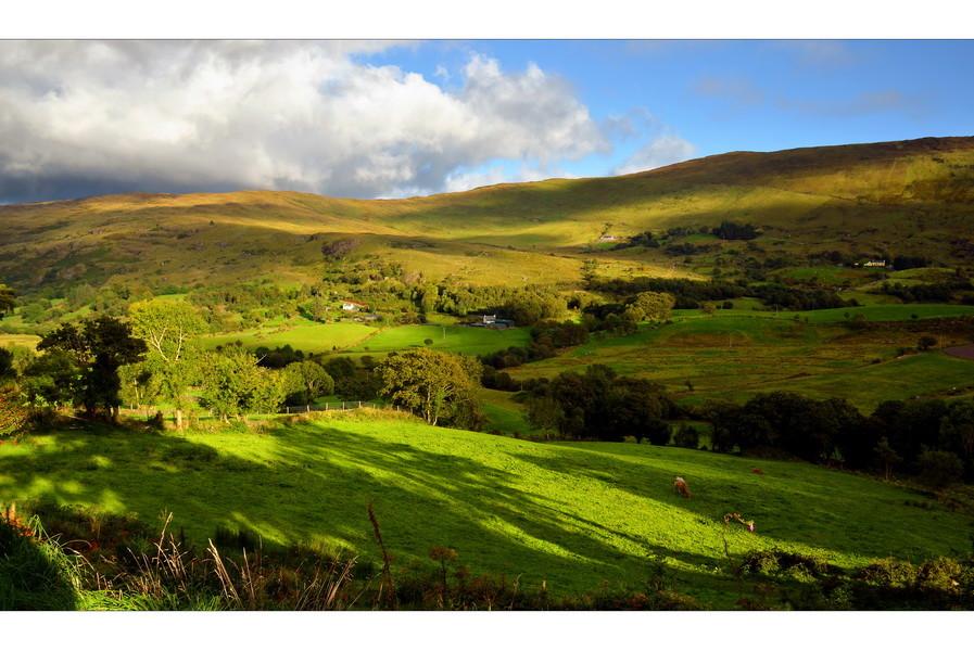 Molly Gallivans Cottage & Traditional Farm /Bonane, Co. Kerry III