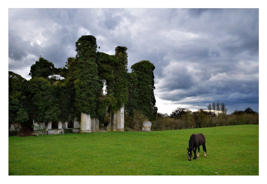 Moydrum Castle, Co. Westmeath