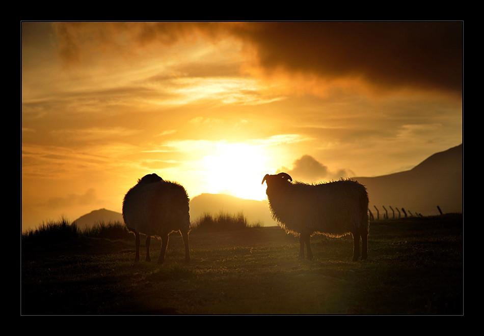 Keel / County Mayo IV