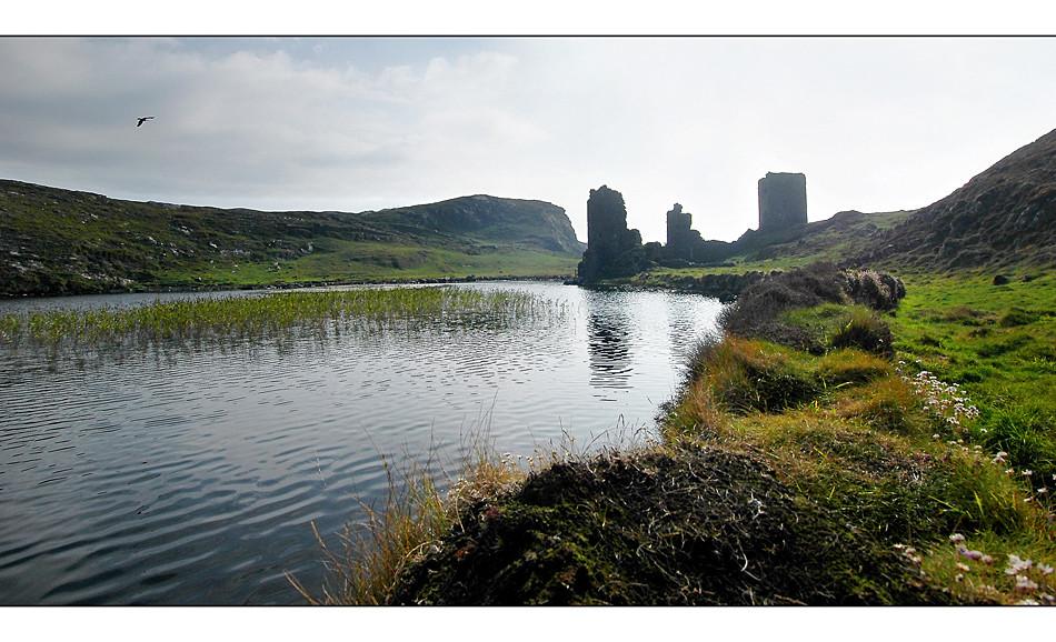 Three Castle Head / Mizen Peninsula VII