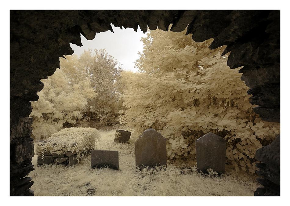 Old Cemeterie / Mallow - Co. Cork I (Infrarot)
