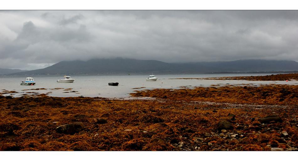 Achill Island / County Mayo V