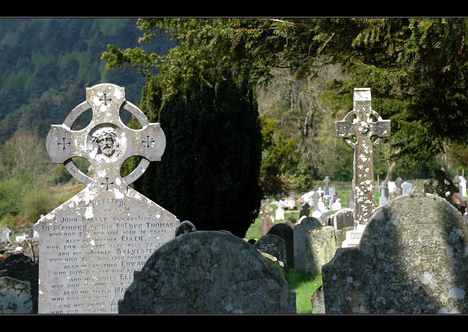 Glendalough / Wicklow Mountains XXIV