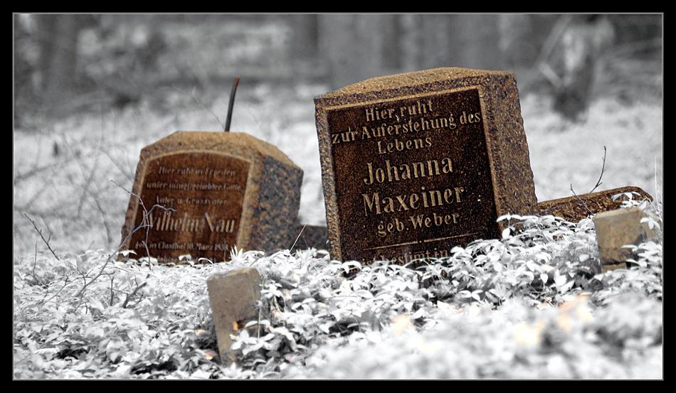 Bergmannsfriedhof Friedrichsegen II (Infrarot)