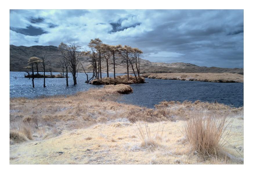 Loch Assynt, Sutherland, Highlands II (Infrarot)