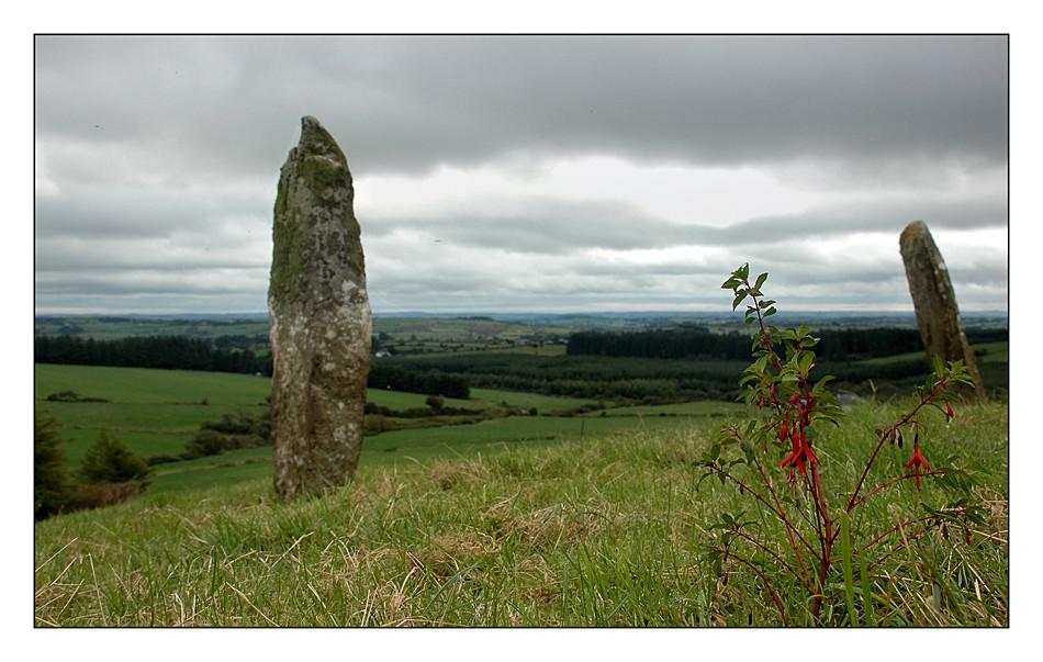 Standing Stone / Mallow - Co. Cork III