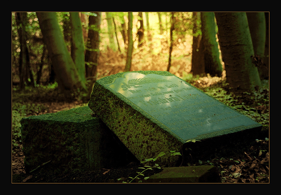 Bergmannsfriedhof Friedrichsegen IV