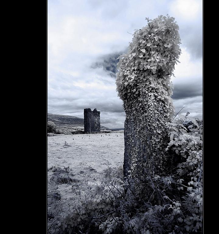 Gleninagh Castle / County Clare II (Infrarot)