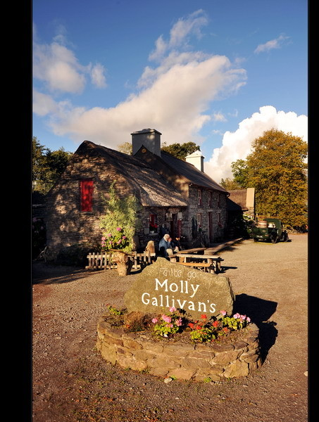 Molly Gallivans Cottage & Traditional Farm /Bonane, Co. Kerry II