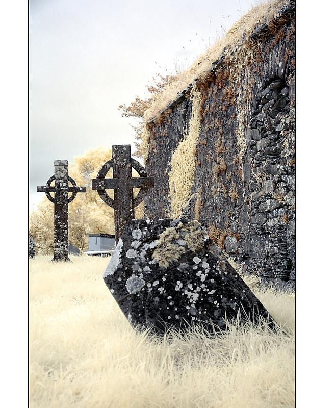 Old Cemeterie / Mallow - Co. Cork II (Infrarot)