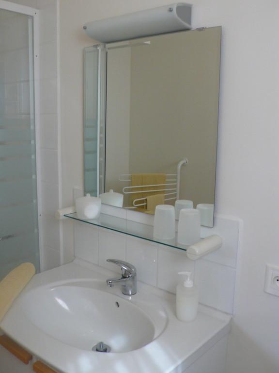 Salle d'eau: lavabo, douche et WC.