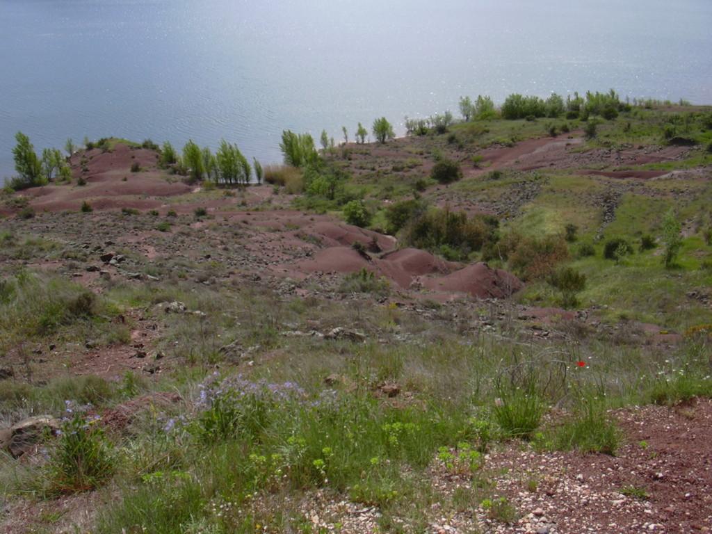 Les terres rouges aux abords du Lac du Salagou