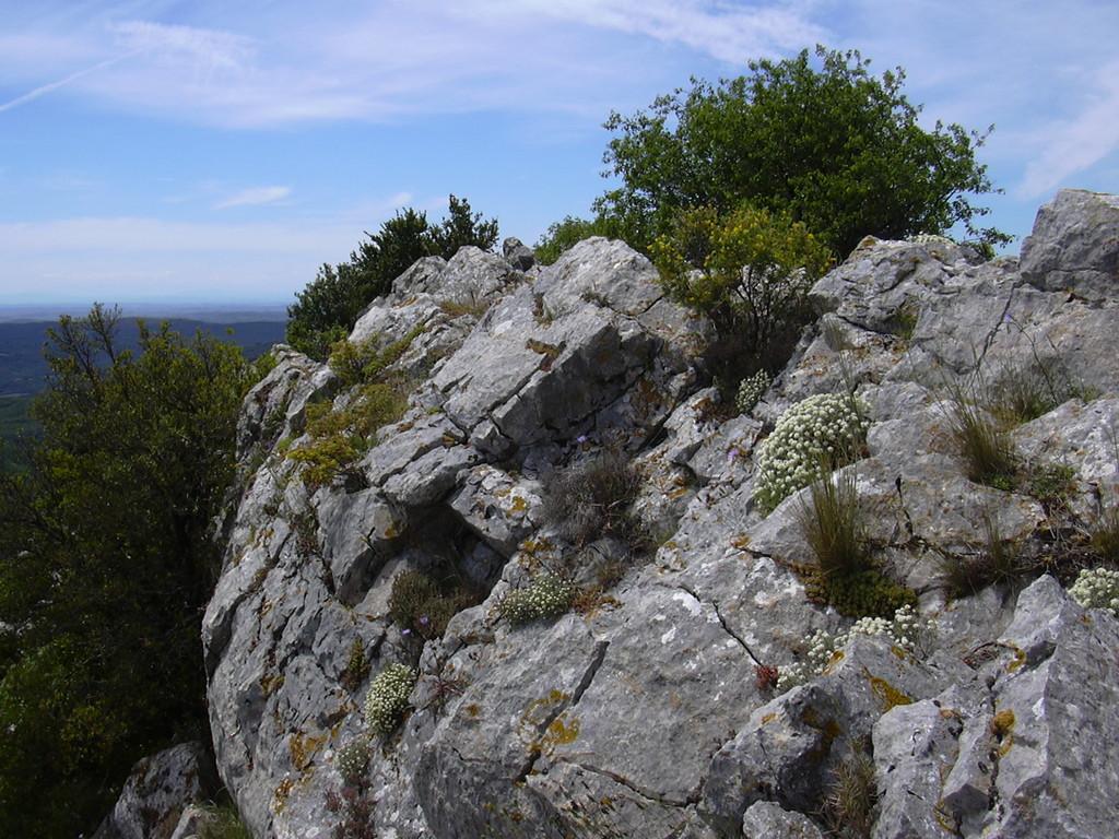 Au sommet du Pic de Vissou à Cabrières