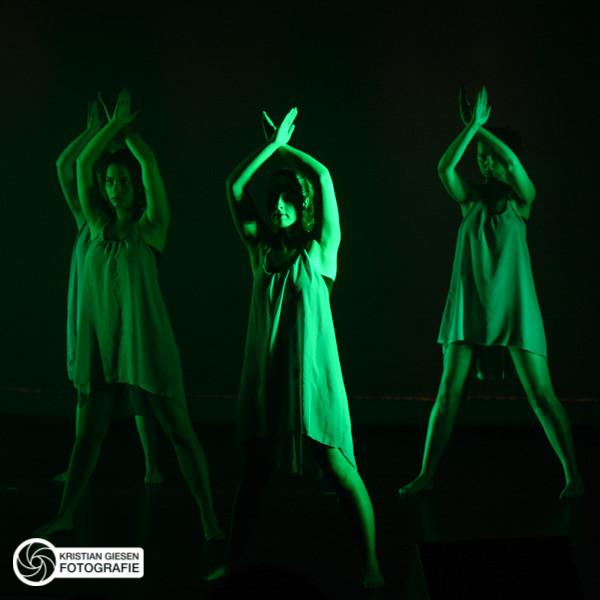 Theatershow 2014