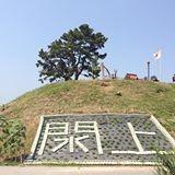 日和山に花を植える活動もしてます