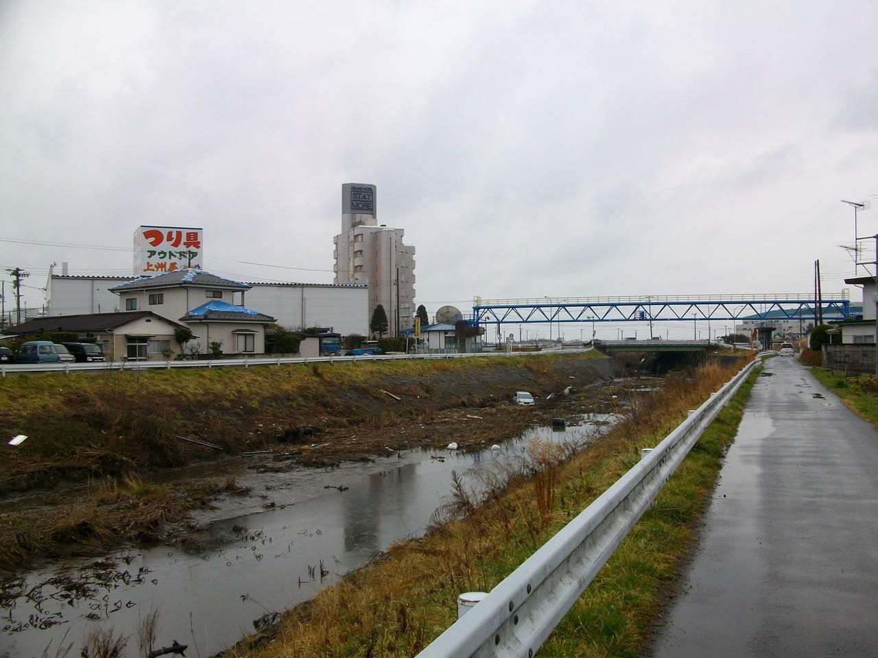 近所の川を津波が遡上しました