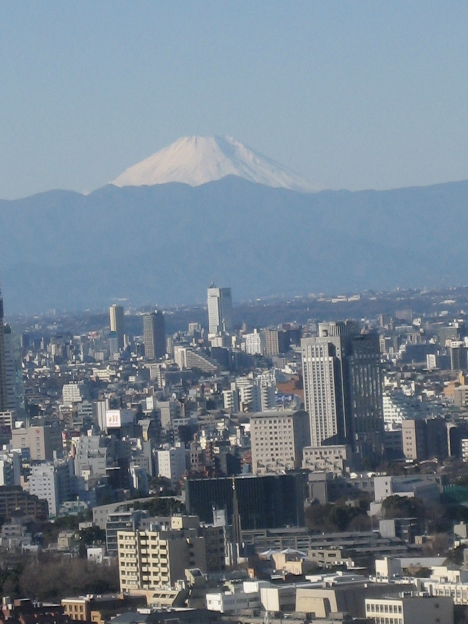 Blick in Tokyo auf den Fudji