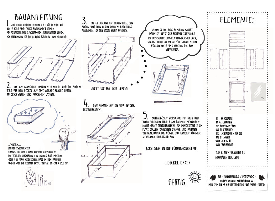illustration eva pils
