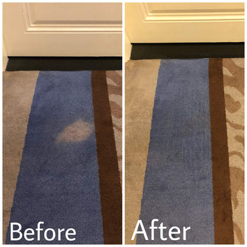 How To Remove Carpet Bleach Stain in Orlando FL.