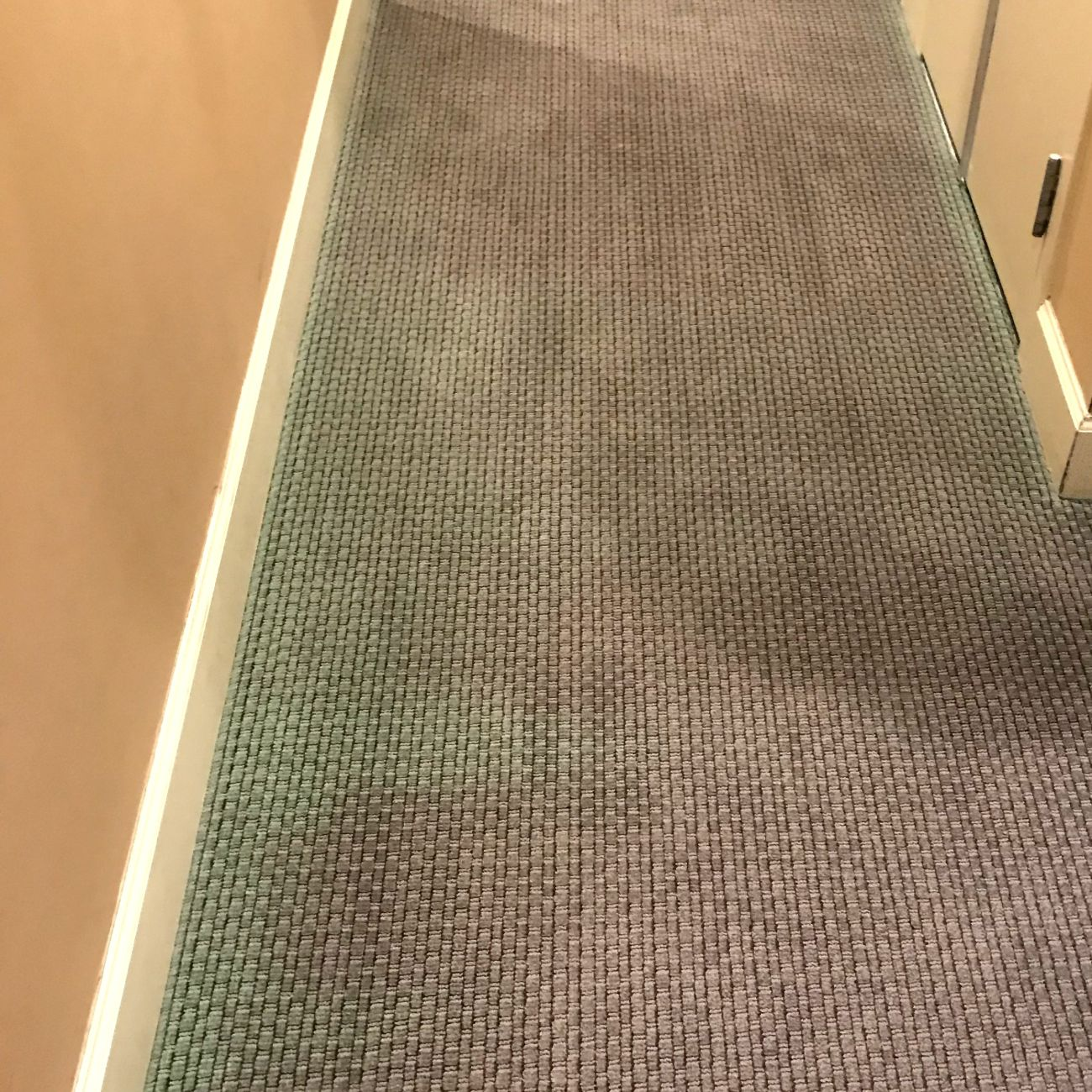 Help! Cleaning Company Bleached My Carpet! In Tampa, FL