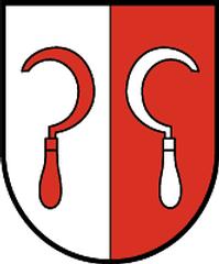 Assling Wappen