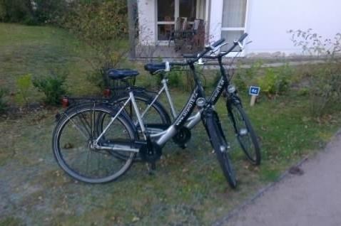 2 Fahrräder stehen während des Aufentahalts gratis bereit (Bothmann - Strandnahe Ferienwohnungen, Usedom)