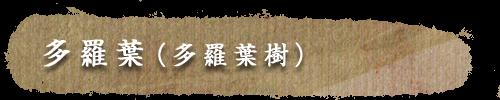 多羅葉(多羅葉樹)