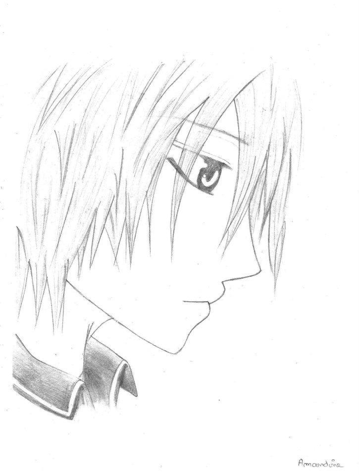 Inspiré du manga Vampire Knight