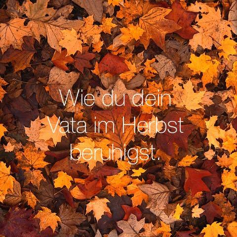 Wie du dein Vata im Herbst beruhigst.