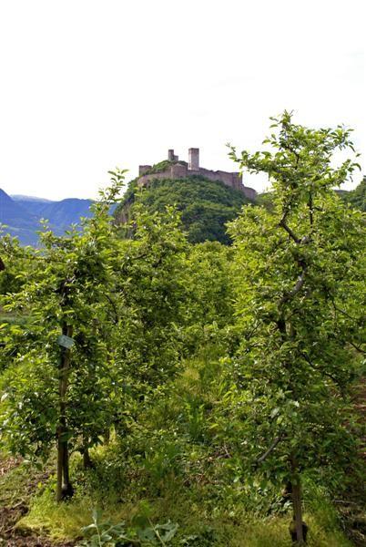 Reinhold Messner's Burg in Firmian
