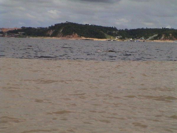 Encontro das Aguas , im Hintergrund ein rosa Flußdelfin