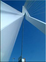 De (vanwege haar constructiefouten) bekende Erasmusbrug. In de Rotterdamse volksmond ook wel 'Parkinsonbrug' genoemd.