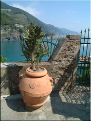 Uitzicht vanaf een terras op Monterosso. De laatste in de rij van 5 gelegen dorpen in de rotswanden aan de Zuidwestkust van Italië.