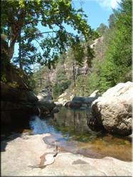 Iets ten Noordoosten van Évisa ligt één van de vele schitterende natuurlijke waterbronnen die Corsica rijk is, de Piscine naturelle d'Antoine.