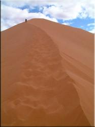 Eén van de hoge duinen in de Erg Chebbi woestijn die tot wel 150 m. hoog kunnen zijn. Een zonsopgang of -ondergang hier bekijken is een echte aanrader.
