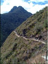 Eén van de paden van de Inca Trail. Een tocht met werkelijk prachtige vergezichten en zeer zeker de moeite om eens een keer te lopen.