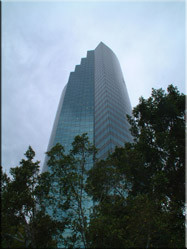 Aan de rand van de Brisbane river ontstijgen veel hoge torenflats boven het stadsbeeld uit.