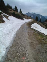 Een drie uur durende afdaling van de 1670 m. hoge Rauschberg bij het plaatsje Ruhpolding is zeker de moeite waard voor de actieve wandelaar.