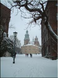 kathedraal in de Wawelburcht