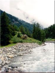 In het schitterende Valle D'Áoste hebben we in Cogné (Noord-West) een mooie lange wandeling gemaakt. Een aanrader voor natuurliefhebbers.