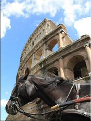 De Korintische, Ionische en Dorische zuilen van het Colosseum in Rome. Romes grootste amfintheater uit 72 n.C.
