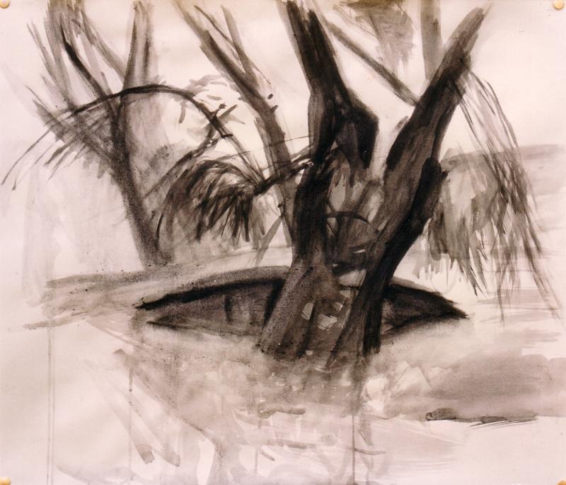 Baum und Boot