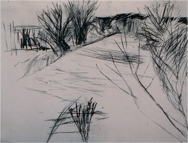 Flussbett im Winter