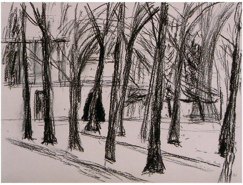 Allee im Park