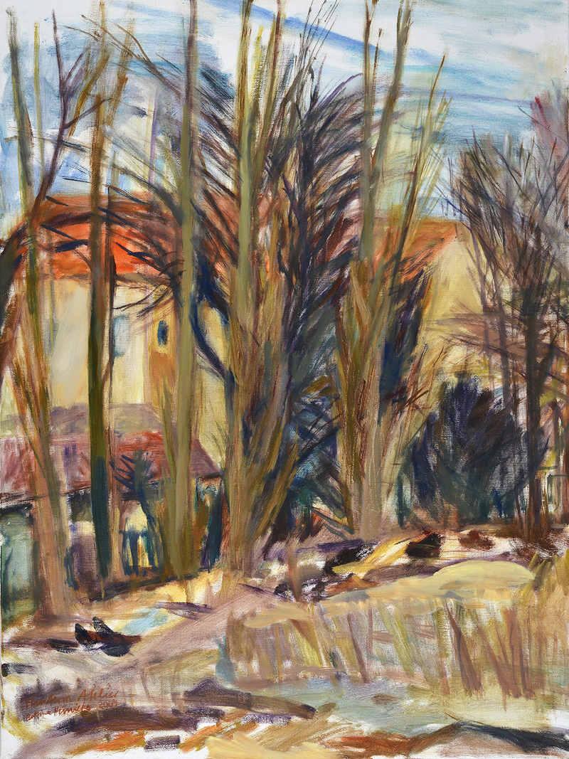 Hinterm Atelier Öl auf Leinwand 80 x 60 cm