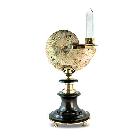 Prunkobjekt Ammonit mit Kristall auf antikem Marmorsockel nach Art der Wunderkammer-Objekte.