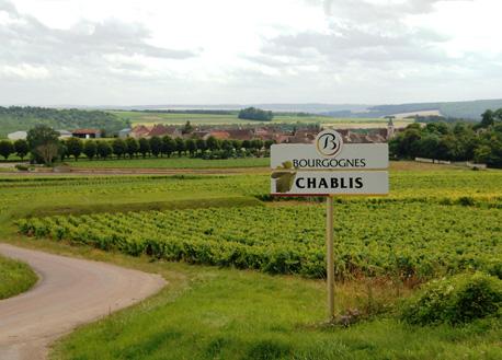 Route des Vins de Chablis