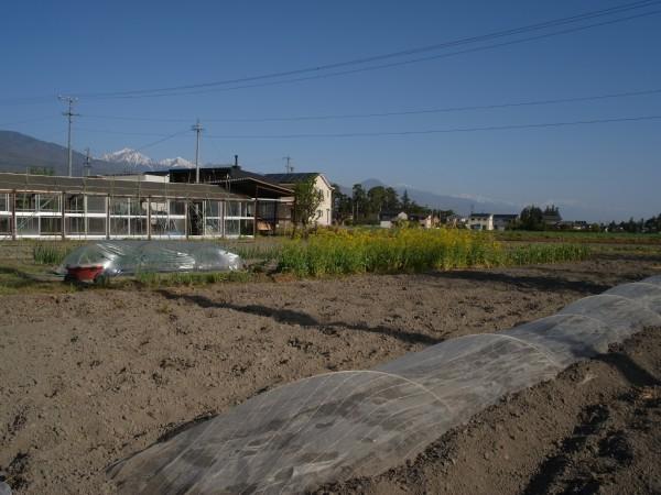 建築家の畑 長野県松本市 安曇野市 半農半建
